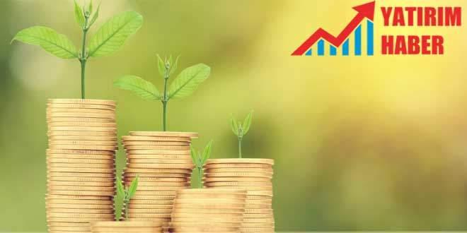 Yatırım Fonu Nedir 2020