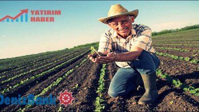 Photo of Denizbank Çiftçiye Sms ile Kredi Veriyor (Üretici Kart)